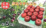 3~4月 訳ありサンふじ約5kg 【青森りんご・CA貯蔵・クール便】