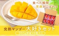 《先行受付》肝付町産 完熟マンゴー 大好きセット