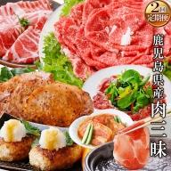 CC-0018 定期便(2回配送)鹿児島県産肉三昧(黒毛和牛・黒豚etc)