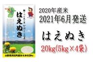 I-0182106【2021年6月発送分】山形県河北町産はえぬき20kg(5kg×4袋) 【JAさがえ西村山】