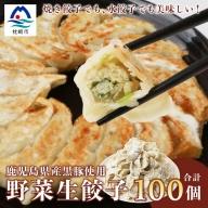 AA-439 【ねぎ塩付き】鹿児島手づくり野菜たっぷり生餃子 20個×5パック【合計100個】