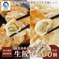 AA-440 【ねぎ塩付き】鹿児島手づくり黒豚生餃子&野菜たっぷり生餃子 20個×5パック【合計100個】