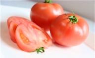 ザ・トマト!トマト好きに食べて欲しいりんか(2kg)