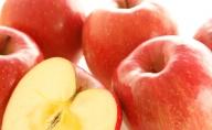 【早期受付!!6kg りんご 11月お届け】 (品種、サイズおまかせ:ご自宅向け)
