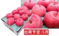 5月 冷た~い最高等級 「特選」 ふじりんご 約3kg 【青森りんご・有袋栽培・CA貯蔵・クール便】