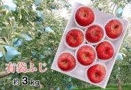 5~8月 りんご 3kg程度 青森産  夏の「特選」有袋ふじ 大玉7~10個