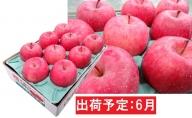 6月 冷た~い最高等級 「特選」 ふじりんご 約3kg 【青森りんご・有袋栽培・CA貯蔵・クール便】