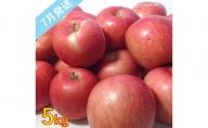 【訳あり】 7月 りんご 5kg程度 青森産 有袋ふじ