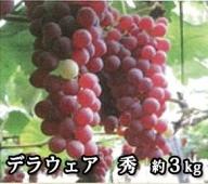 A-00121 山形県河北町産ぶどう(デラウェア)3kg