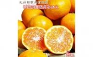 G6073_【ご家庭用訳アリ】紀州有田産濃厚完熟温州みかん 5kg