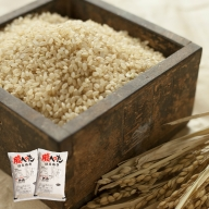 SA0673 令和2年産 一等米 はえぬき玄米10kg(5kg×2袋) YA