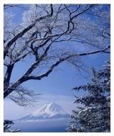 富士山写真大賞 額装写真「春の淡雪 御坂峠より」(全紙 額装サイズ約530×640mm)