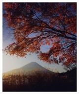 富士山写真大賞  額装写真「晩秋 精進湖にて」(全紙  額装サイズ約530×640mm)