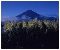 富士山写真大賞  額装写真「初秋の詩 河口湖大石公園」(全紙  額装サイズ約530×640mm)