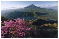 富士山写真大賞  額装写真「富士樹海 雪頭ヶ岳より」(全紙  額装サイズ約530×640mm)