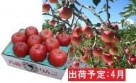 4月 贈答規格サンふじ約3kg・特選~特秀【青森りんご・CA貯蔵・クール便】