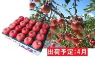4月 りんご 青森産 約5kg 丸福サンふじ【CA貯蔵・クール便】
