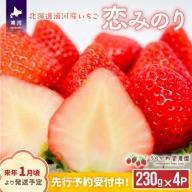 北海道浦河産いちご「恋みのり」250g×4P[B13-268]