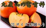 ZD92005_【先行予約】【厳選・産直】九度山町の富有柿2Lサイズ12個入り [2021年10月~発送]