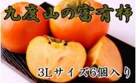ZD92006_【先行予約】【厳選・産直】九度山町の富有柿3Lサイズ6個入り [2021年10月~発送]