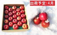 4月 冷た~い雪蔵貯蔵サンふじ約5kg【山形りんご・大江町産】