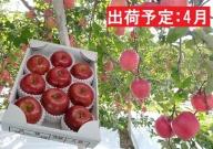 4月 春りんご 特選サンふじ約3kg(スマートフレッシュ貯蔵)【山形りんご・大江町産】