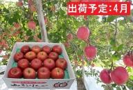 4月  訳あり 春りんご 家庭用サンふじ約5kg(スマートフレッシュ貯蔵)【山形りんご・大江町産】