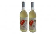 やまがたのりんごわいん720ml×2本【山形りんご・アップルワイン】