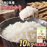 令和2年産 ひのひかり10kg 熊本 県産 白米10kg+国産雑穀米 令和2年 精米 玉東町《3-7営業日以内に順次出荷(土日祝除く)》