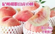 紀州和歌山産の桃 約1.8kg 化粧箱入※2021年6月下旬より順次発送(お届け日指定不可)
