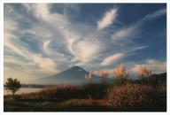 富士山写真大賞  額装写真「秋風に舞う 河口湖にて」(全紙  額装サイズ約530×640mm)