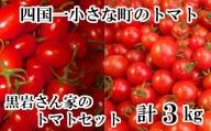 【四国一小さなまちのトマト】≪令和3年3月発送≫ 黒岩さん家のトマトセット 計3.0kg