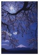 富士山写真大賞  額装写真「光彩 河口湖にて」(全紙  額装サイズ約530×640mm)