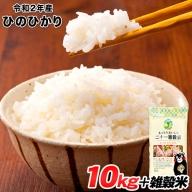 令和2年産 ひのひかり 10kg 熊本 県産 白米10kg+国産雑穀米 令和2年 精米 長洲町 《3-7営業日以内に順次出荷(土日祝除く)》
