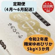 【定期便】 北海道 ゆめぴりか 精米 5kg 【4月~6月・3か月お届け】 令和2年産 雪中米