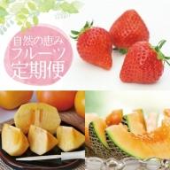 SE0044 山形県庄内地方から贈る 自然の恵みフルーツ定期便