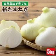 W-2249/【予約販売】自然農法で育てた 新たまねぎ 5kg