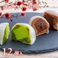 B3-01 生チョコ大福、抹茶生チョコ大福詰合せ(10個入)