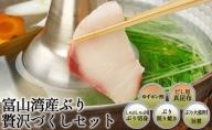 【冷凍】富山湾産ぶり贅沢づくしセット 富山県 魚津 鰤 ブリ 詰め合わせ