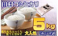 【令和2年産】 田村コシヒカリ5kg