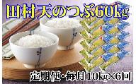 【定期便】田村市産天のつぶ1俵(60kg)【10kgずつ6回配送】
