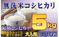 【無洗米】福島産コシヒカリ5kg