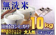 【無洗米】【令和2年産】田村市産コシヒカリ10kg