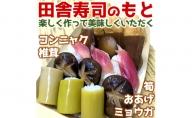 【高知を代表する田舎料理をご自宅で】田舎寿司のもとと 棚田米・土佐天空の郷 にこまるセット