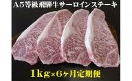 【6ヶ月定期便】A5等級飛騨牛サーロインステーキ用1kg