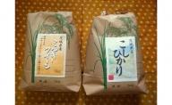 ☆令和二年産☆茨城県お米2種食べ比べ10kgセット(5kg×2)(1)コシヒカリ・ミルキークイーン