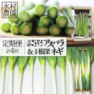 アスパラ&ネギ4回定期便 水村農園 飛騨産 旬の野菜[Q548]