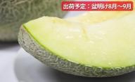 【先行予約/盆明け発送】 訳あり メロン 2.5kg程度 (緑肉2玉)  津軽産