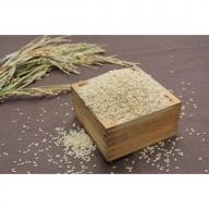 GF05◇令和2年度淡路島産 合鴨農法米 鴨の恵み 玄米(ヒノヒカリ)  10kg
