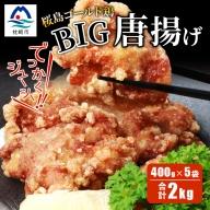 AA-464 桜島ゴールド鶏BIG唐揚げ400g×5袋【合計2Kg】【定番!!激熱のご当地グルメ】